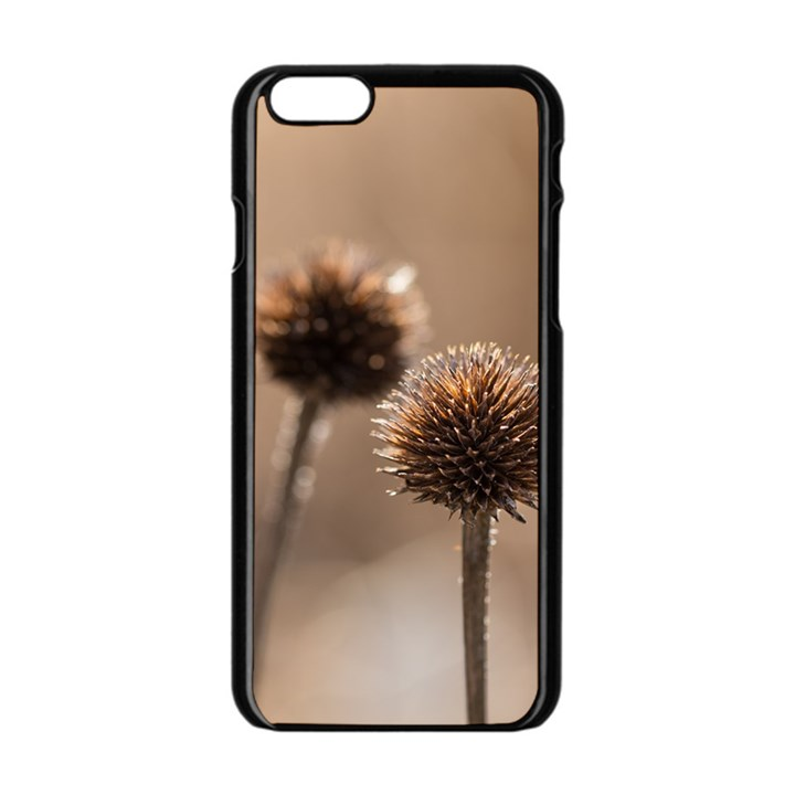 2  Verwelkte Kugeldistel Apple iPhone 6/6S Black Enamel Case