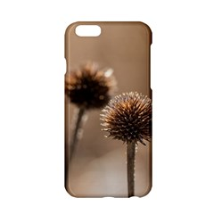 2  Verwelkte Kugeldistel Apple iPhone 6/6S Hardshell Case