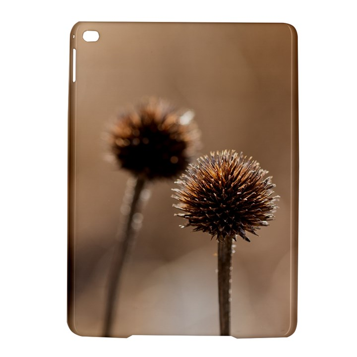 2  Verwelkte Kugeldistel iPad Air 2 Hardshell Cases