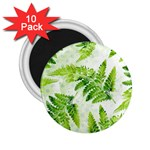 Fern Leaves 2.25  Magnets (10 pack)  Front