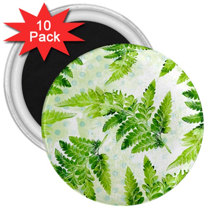 Fern Leaves 3  Magnets (10 pack)