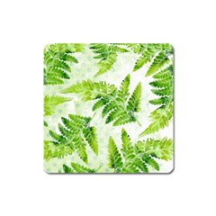 Fern Leaves Square Magnet