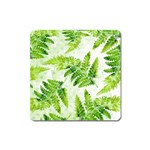 Fern Leaves Square Magnet Front