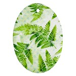 Fern Leaves Oval Ornament (Two Sides) Back