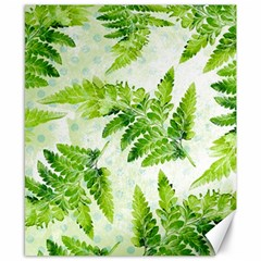 Fern Leaves Canvas 8  x 10
