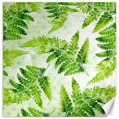 Fern Leaves Canvas 20  x 20