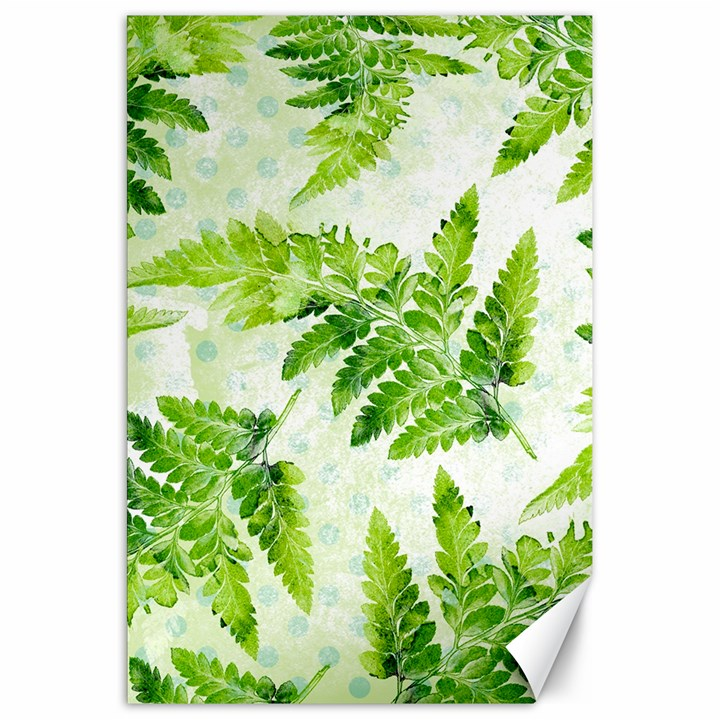 Fern Leaves Canvas 20  x 30