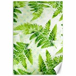 Fern Leaves Canvas 24  x 36  36 x24 Canvas - 1