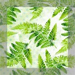 Fern Leaves Mini Canvas 8  x 8  8  x 8  x 0.875  Stretched Canvas