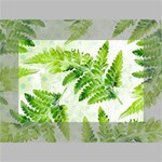 Fern Leaves Mini Canvas 6  x 4  6  x 4  x 0.875  Stretched Canvas