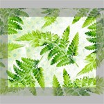 Fern Leaves Canvas 10  x 8  10  x 8  x 0.875  Stretched Canvas