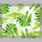 Fern Leaves Canvas 14  x 11  14  x 11  x 0.875  Stretched Canvas