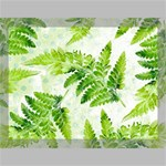 Fern Leaves Canvas 16  x 12  16  x 12  x 0.875  Stretched Canvas