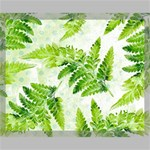 Fern Leaves Canvas 20  x 16  20  x 16  x 0.875  Stretched Canvas