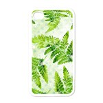 Fern Leaves Apple iPhone 4 Case (White) Front