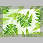 Fern Leaves Deluxe Canvas 18  x 12   18  x 12  x 1.5  Stretched Canvas