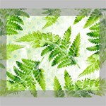 Fern Leaves Deluxe Canvas 20  x 16   20  x 16  x 1.5  Stretched Canvas