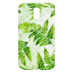 Fern Leaves Samsung Galaxy S II Skyrocket Hardshell Case