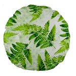 Fern Leaves Large 18  Premium Round Cushions Back