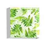 Fern Leaves 4 x 4  Acrylic Photo Blocks Front