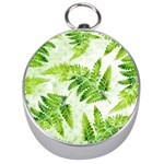 Fern Leaves Silver Compasses Front