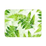 Fern Leaves Double Sided Flano Blanket (Mini)  35 x27 Blanket Back