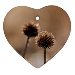 Withered Globe Thistle In Autumn Macro Ornament (Heart)  Front