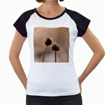Withered Globe Thistle In Autumn Macro Women s Cap Sleeve T Front