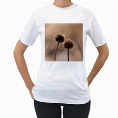 Withered Globe Thistle In Autumn Macro Women s T Shirt (white) (two Sided)