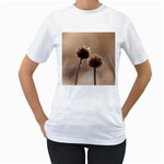 Withered Globe Thistle In Autumn Macro Women s T-Shirt (White) (Two Sided) Front