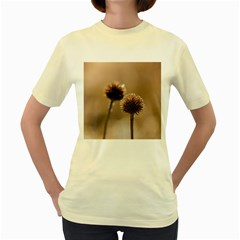 Withered Globe Thistle In Autumn Macro Women s Yellow T Shirt