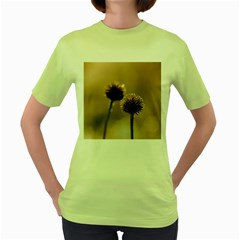 Withered Globe Thistle In Autumn Macro Women s Green T Shirt