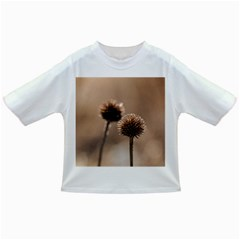 Withered Globe Thistle In Autumn Macro Infant/toddler T Shirts
