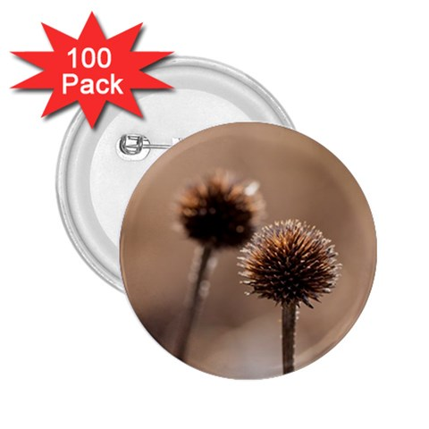 Withered Globe Thistle In Autumn Macro 2.25  Buttons (100 pack)