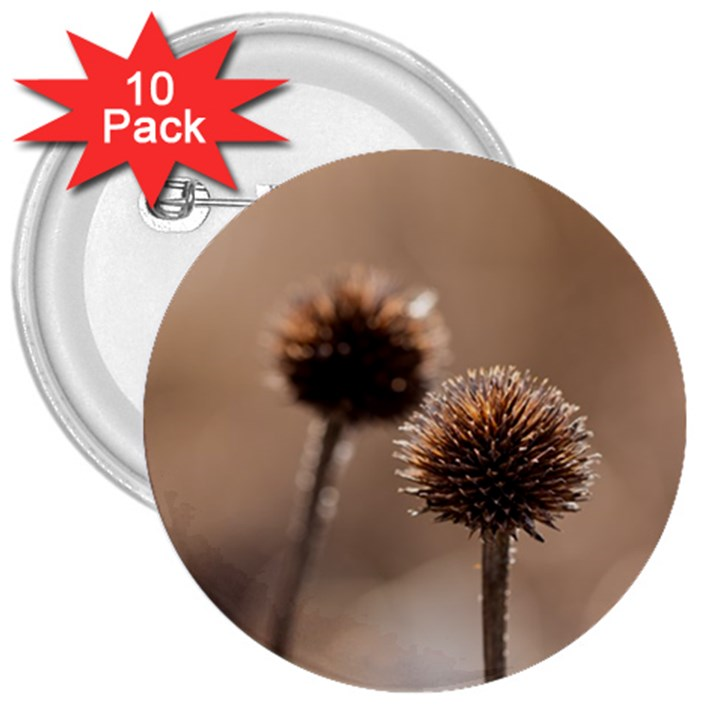 Withered Globe Thistle In Autumn Macro 3  Buttons (10 pack)