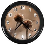 Withered Globe Thistle In Autumn Macro Wall Clocks (Black) Front