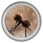Withered Globe Thistle In Autumn Macro Wall Clocks (Silver)  Front