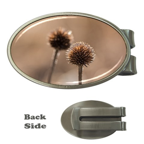 Withered Globe Thistle In Autumn Macro Money Clips (Oval)