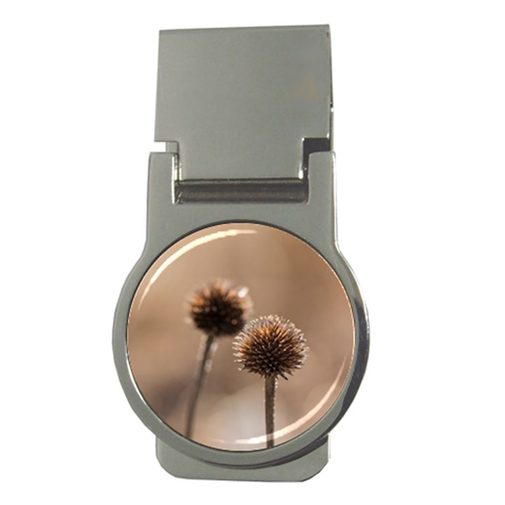 Withered Globe Thistle In Autumn Macro Money Clips (Round)