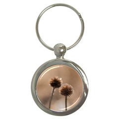 Withered Globe Thistle In Autumn Macro Key Chains (round)
