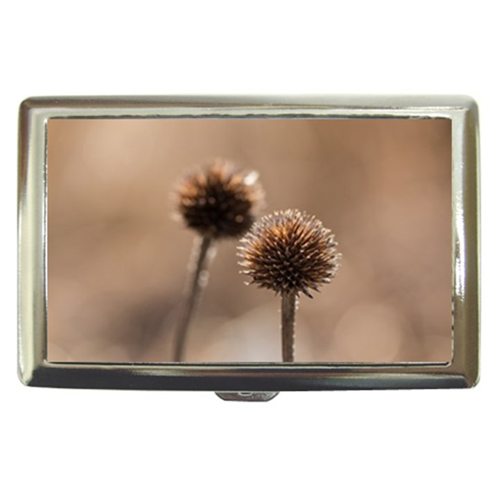 Withered Globe Thistle In Autumn Macro Cigarette Money Cases