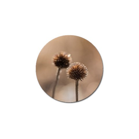 Withered Globe Thistle In Autumn Macro Golf Ball Marker