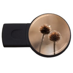 Withered Globe Thistle In Autumn Macro USB Flash Drive Round (1 GB)