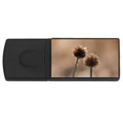 Withered Globe Thistle In Autumn Macro USB Flash Drive Rectangular (1 GB)