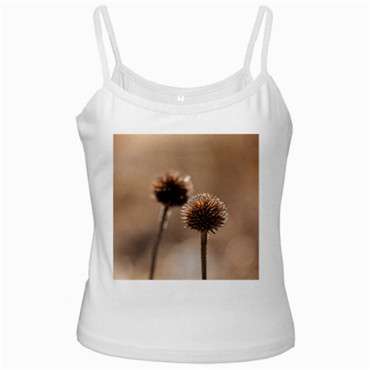 Withered Globe Thistle In Autumn Macro Ladies Camisoles