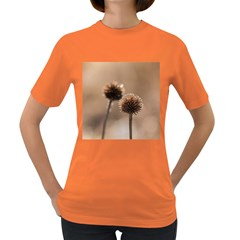 Withered Globe Thistle In Autumn Macro Women s Dark T Shirt
