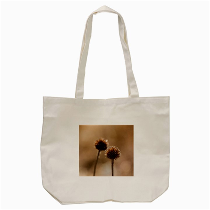 Withered Globe Thistle In Autumn Macro Tote Bag (Cream)