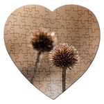 Withered Globe Thistle In Autumn Macro Jigsaw Puzzle (Heart) Front