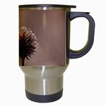 Withered Globe Thistle In Autumn Macro Travel Mugs (White) Right