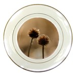 Withered Globe Thistle In Autumn Macro Porcelain Plates Front